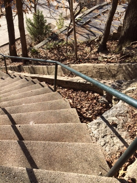steps to pine