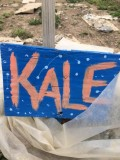 KaleNash