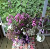 bouquet, screened porch, pinks & purples
