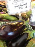 eggplant, walker's